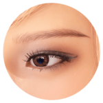 sex doll heads options-brown eyes